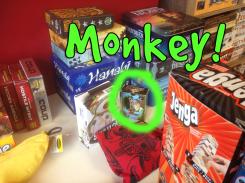 Monkey at BnB